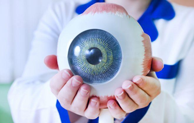 تشريح العين وانفصال الشبكية